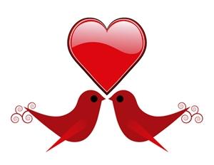 Love birds 300pxl